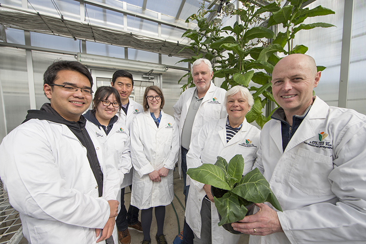 Team stands in greenhouse holding plant.