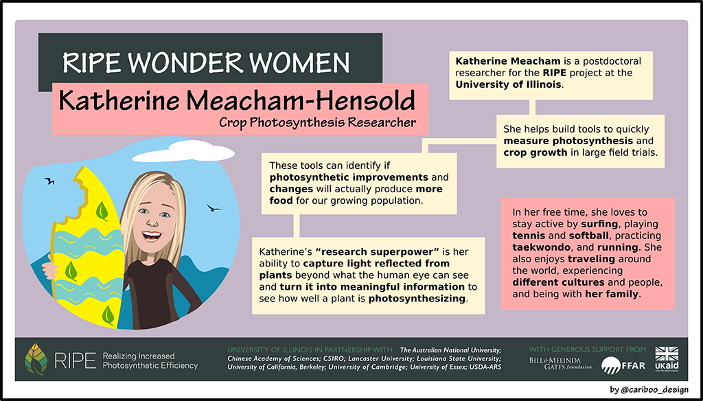Graphic Illustration of Katherine Meacham-Hensold.