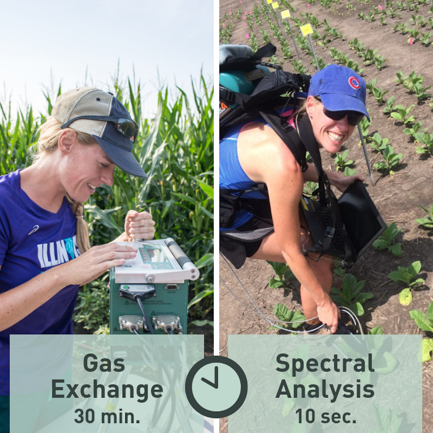 Graphic gas exchange spectral analysis