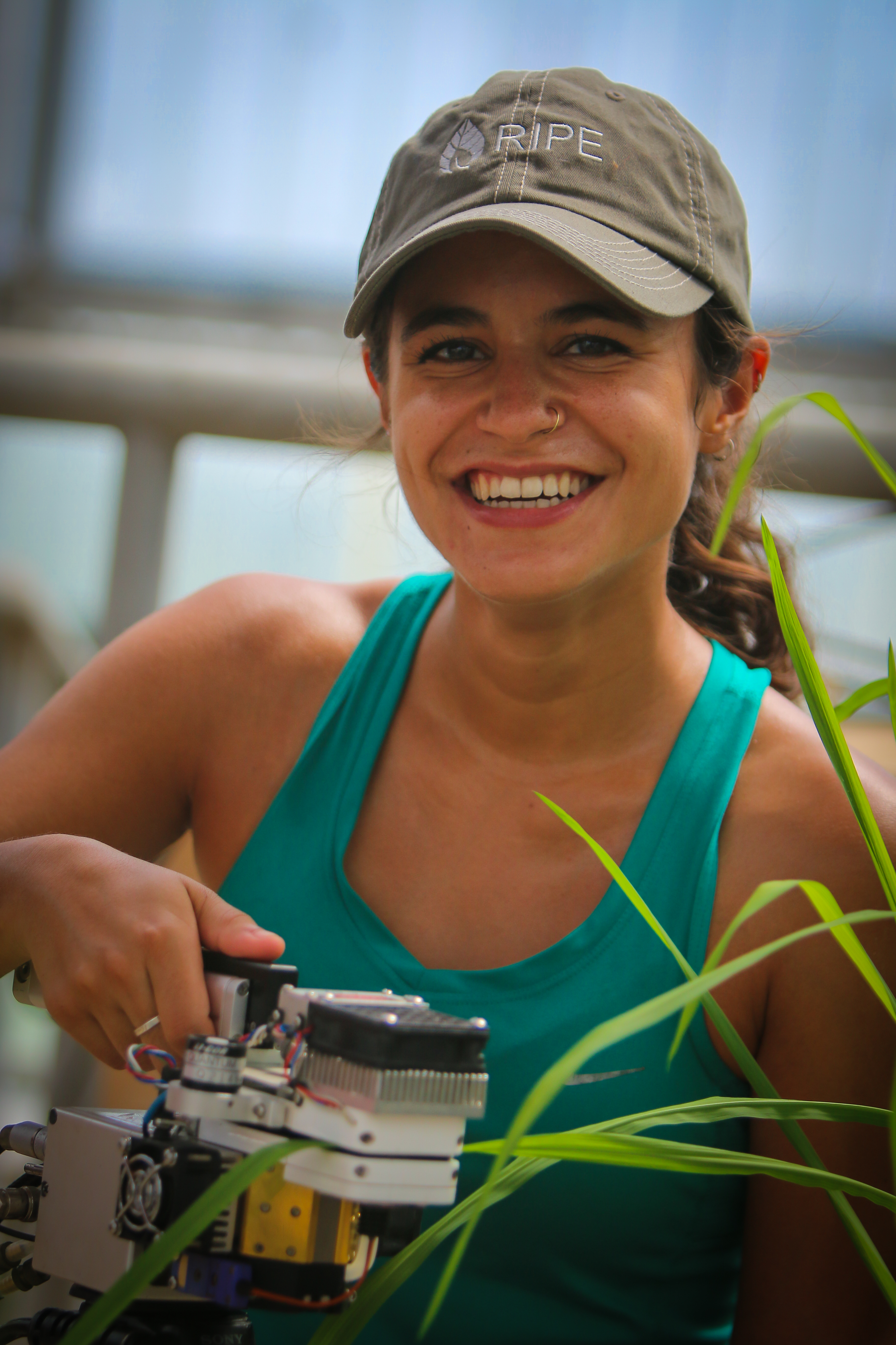 Liana measures the photosynthetic efficiency of a rice plant.
