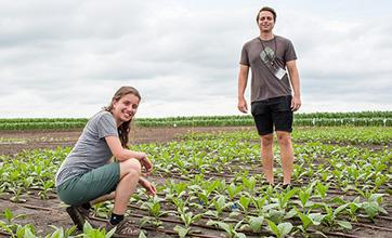 Researchers stand in field trials.