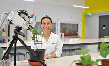 Elizabete Carmo-Silva stands at a lab bench with a LICOR machine measuring the photosynthetic efficiency of plants