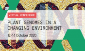 Plant Genomes in a Changing Environment
